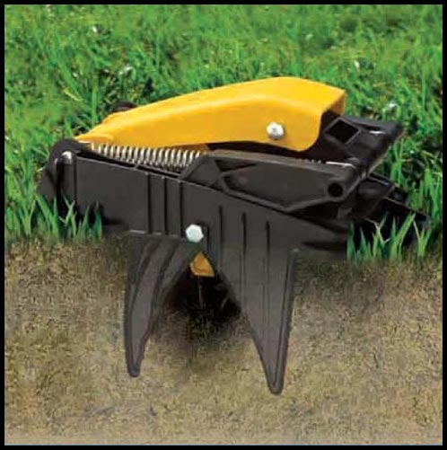 best mole trap